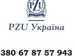 Страховка PZU для рабочей визы. Заполнение анкеты
