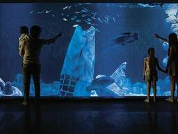Строительство океанариумов и аквариумов
