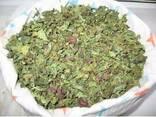 Сушенный лист амаранта , сушене листя амаранта