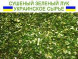 Сушеный зеленый лук - фото 1