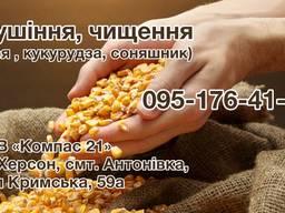 Сушіння (сої, кукурудзи, соняшнику)
