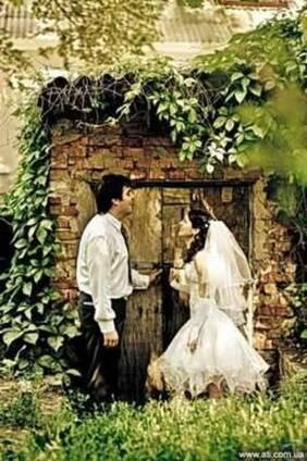 Свадебный фотограф. торжества, портфолио