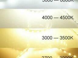 """Светодиодная LED лента гибкая 12V PROlum  IP20 2835\60 Series """"SG"""", Тепло-белый. .."""