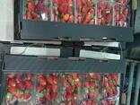 Свежая клубника Fresh Strawberry - фото 3
