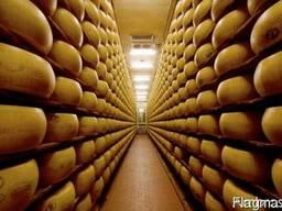 Сырный продукт на экспорт
