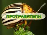 СЗР по конкурентным ценам (раб. по Украин