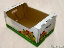 Упаковка для клубники, малины, персика, черешни, винограда