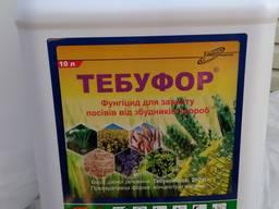 Тебуфор фолікур тебуконазол 250