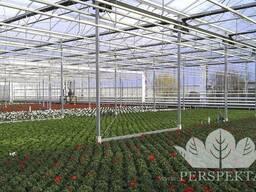 Теплицы: промышленные, фермерские, зимние сады
