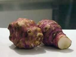 Топинамбур сушёный (земляная груша)