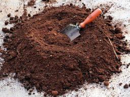 Торф для голубики (лохини) и для выращивания грибов