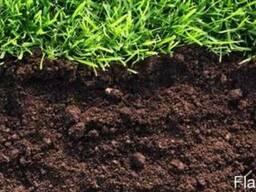 Торф, ґрунт , чорнозем . Оптом! Висока якість, приємні ціни!