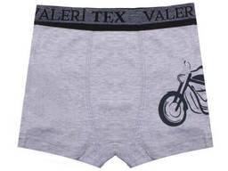 Трусы для мальчика Валери-Текс 1064-55-418-030 р. 60 Серый