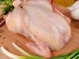 Тушка куриная, курица в Мелитополе