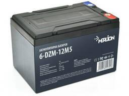 Тяговая аккумуляторная батарея AGM Merlion 6-DZM-12, 12V 12Ah M5 (151х98х101 мм) Green Q4