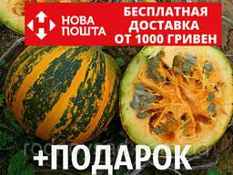 Тыква голосеменная семена 20 грамм (около 100 шт) насіння. ..