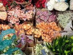 Гурітвня квітів, зрізані квіти, кімнатні рослини, флористичні матеріали
