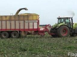 Уборка кукурузы на силос покос травы сенаж корм
