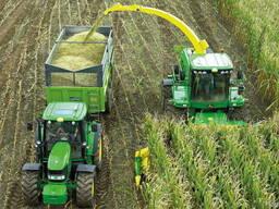Уборка кукурузы на силос сенаж подбор валков покос травы