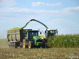 Уборка кукурузы на силос сенаж покос травы уборка силоса