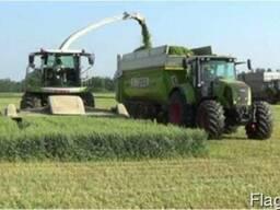 Уборка кукурузы на силос сенаж покос травы