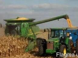 Уборка кукурузы на силос услуги солосоуборочного комбайна