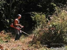 Уборка участков спиливание деревьев в Одессе