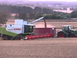 Уборка урожая. Комбайн class lexion 580 с кукурузной жаткой