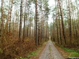 Участок 12 соток, Процев, городок Зеленый Гай, 25 км Киев