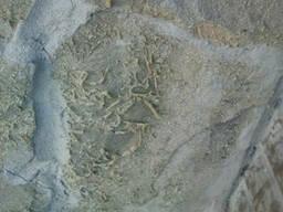 Удаление чистка лака, клея, старых пропиток с гранита, мрамо - фото 2
