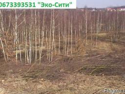 Удаление деревьев Киев. Обрезка сосен.