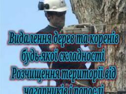 Удаление деревьев, расчистка территории, благоустройство
