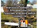 Удаление деревьев, уборка территории, благоустройство и озеленение - фото 1