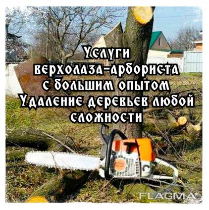 Удаление деревьев, уборка территории, благоустройство и озеленение