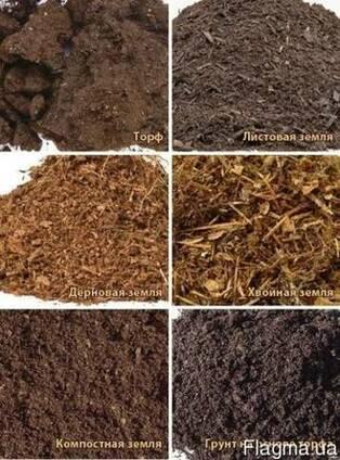 Удобрения натуральные гумус купить