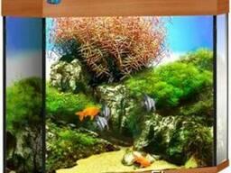 Угловой аквариум с крышкой