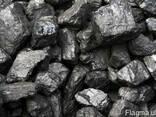Уголь каменный ДГ 13-100 Концентрат - фото 1