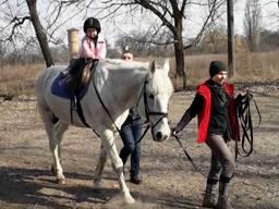 Уроки верховой езды, иппотерапия