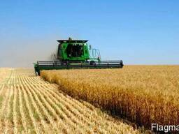 Услуги аренда комбайна услуги по уборки урожая сои кукурузы