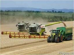 Услуги бункера перегрузчика зерна