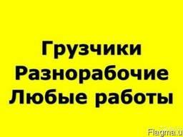 Услуги Грузчиков Разнорабочих Киев
