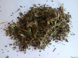 Услуги по измельчению лекарственных растений - фото 1