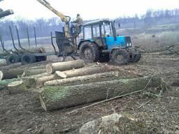 Услуги лесхозам по валке леса, авар. деревья