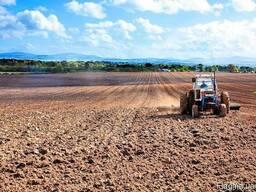 Услуги обрабработки земли закритие влаги чизилевание компакт