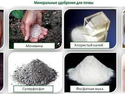 Услуги по фасовке товаров - фото 4