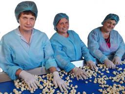 Дробление чеснока. Услуги по переработке чеснока, калибровке головки и однозубки