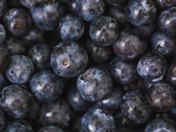 Услуги по шоковой заморозке ягод, овощей и фруктов.