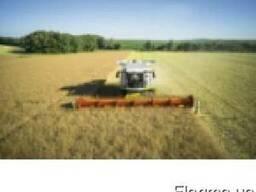 Услуги по уборке урожая комбайном зерновых сои кукурузы и др