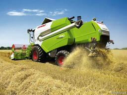 Услуги по уборке урожая зерновых кукурузы подсолнуха рапса