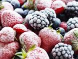 Услуги шоковой заморозке ягод, овощей и фруктов - фото 1